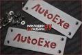 Шильдики на коврики AutoExeACE010